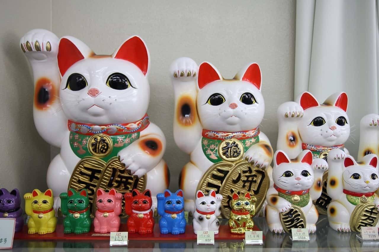 lista di nomi per gatti femmine giapponesi