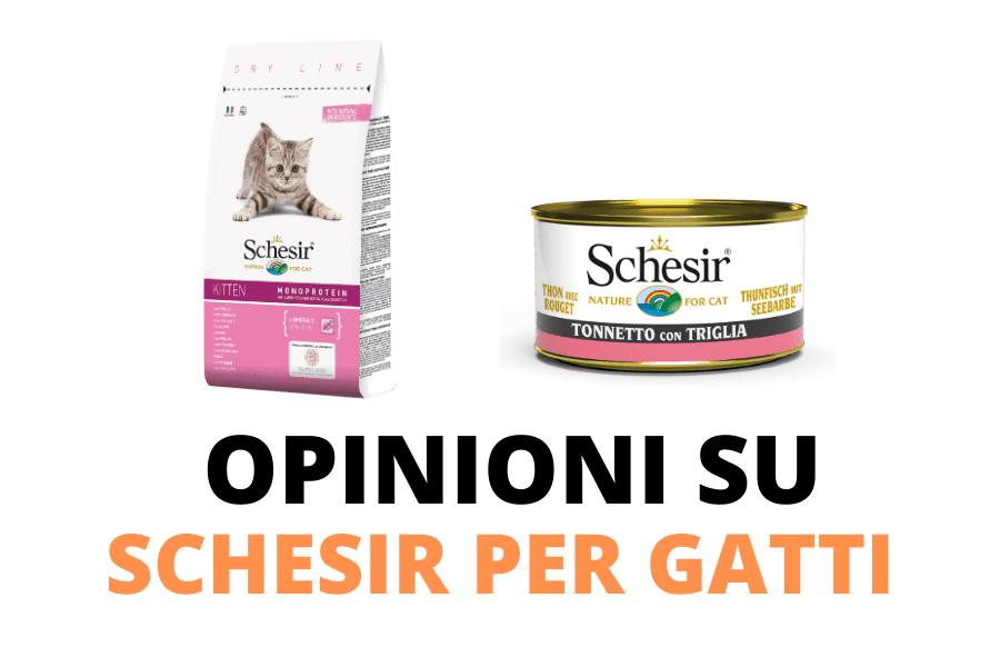Schesir opinioni e recensioni sul cibo per gatti
