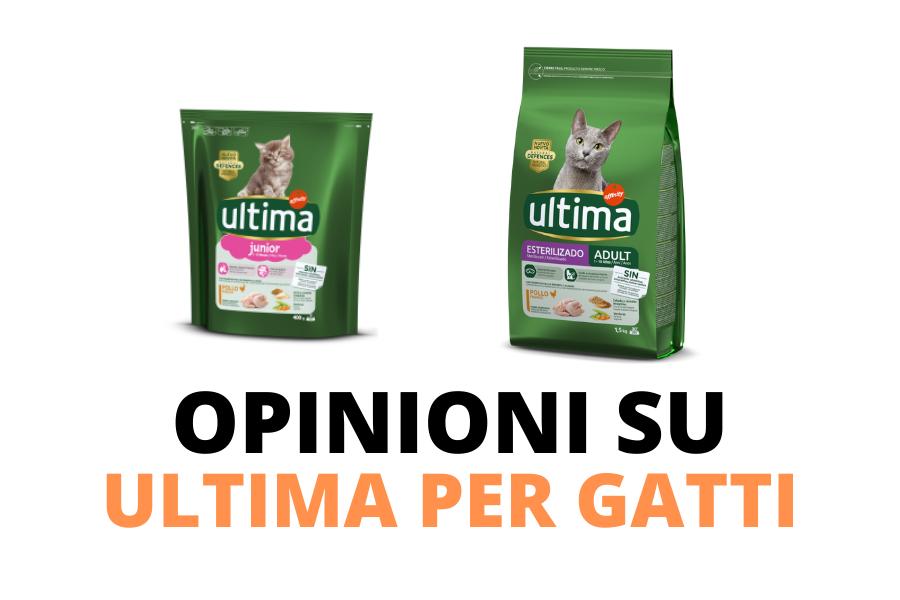 ultima nature per gatti - opinioni e recensioni al riguardo