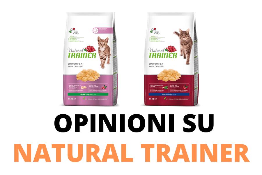 Natural trainer per gatti opinioni